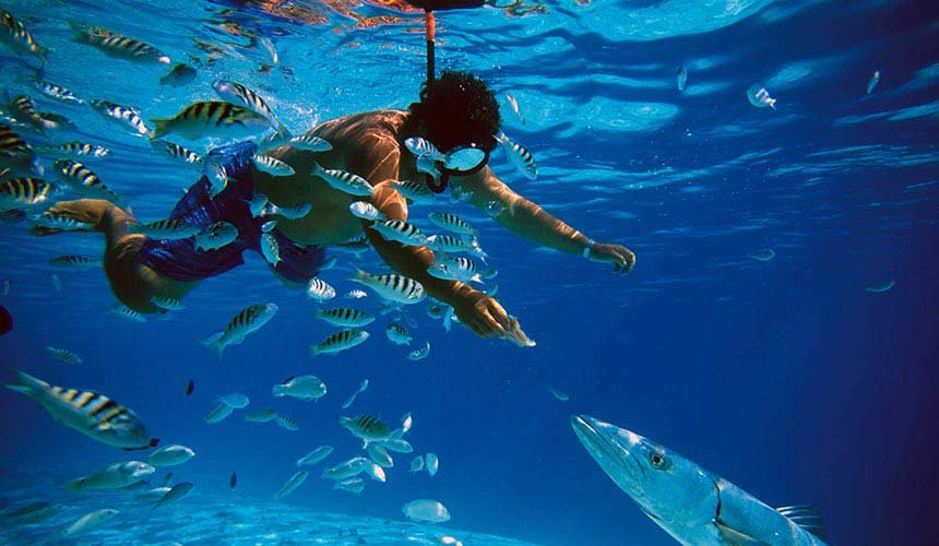 Snorkelling with Grand Island Tour - Tour