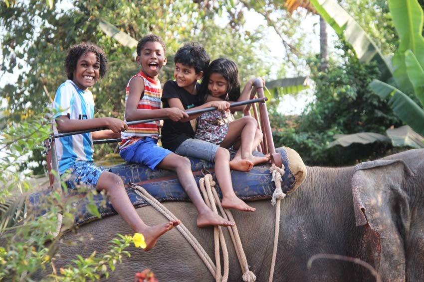 Elephant Ride - Tour