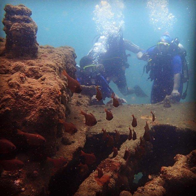 Discover Scuba Diving - Tour