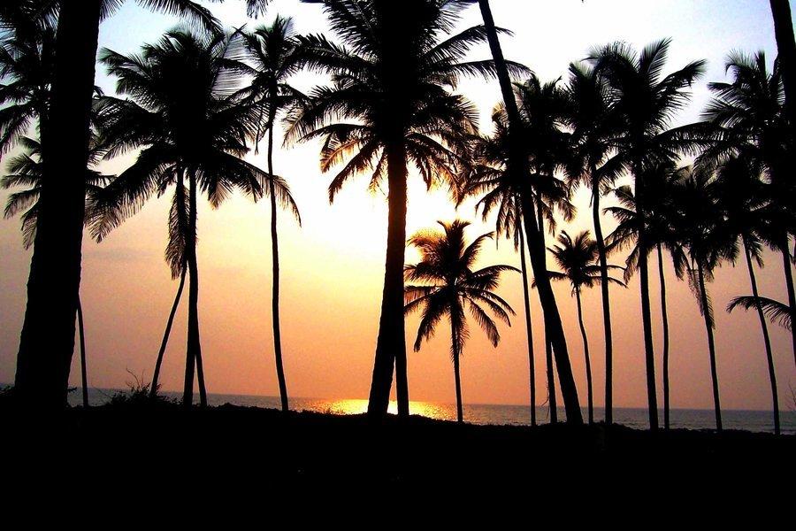 Island Trip - Tour