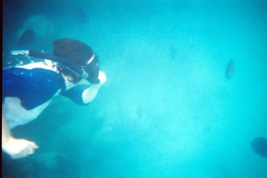 Open Water Diver - Tour