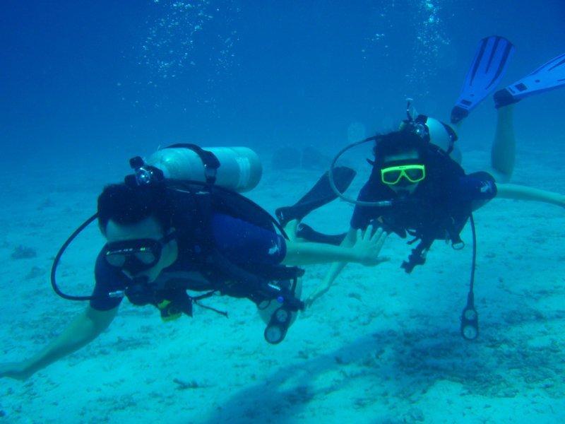 Scuba Diver - Tour