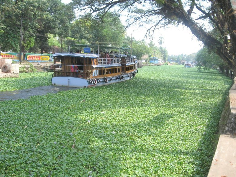 Same day Backwater Tour at Alleppey with Reture Flight tickets from Mumbai - Tour