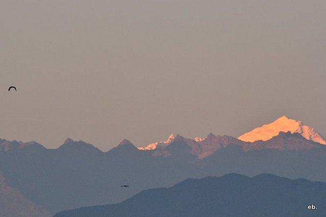 Splendour Himalaya - Tour