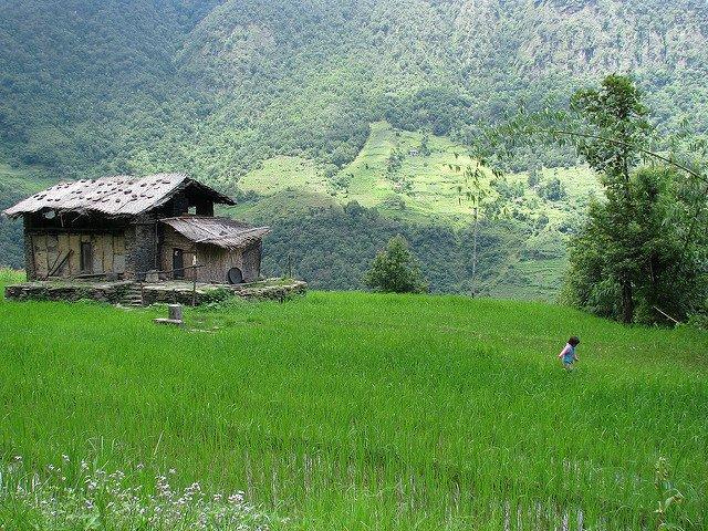 Discover Eastern Himalayas 2 - Tour