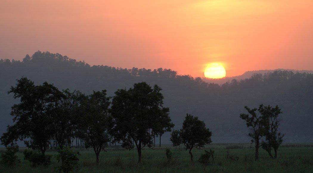 Raja Ji National Park: Full Day Safari - Tour