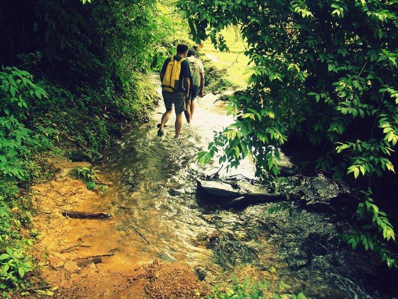 Trek to Tambdi Surla - Tour