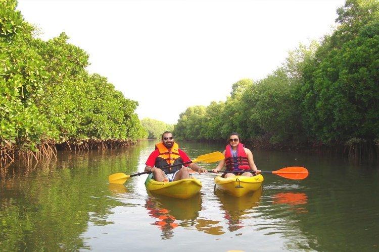 Chorao Bird Sanctuary Kayaking - Tour