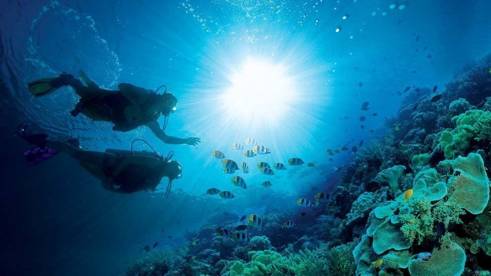 Open Water Dive Course - Koh Tao (Deposit only) - Tour