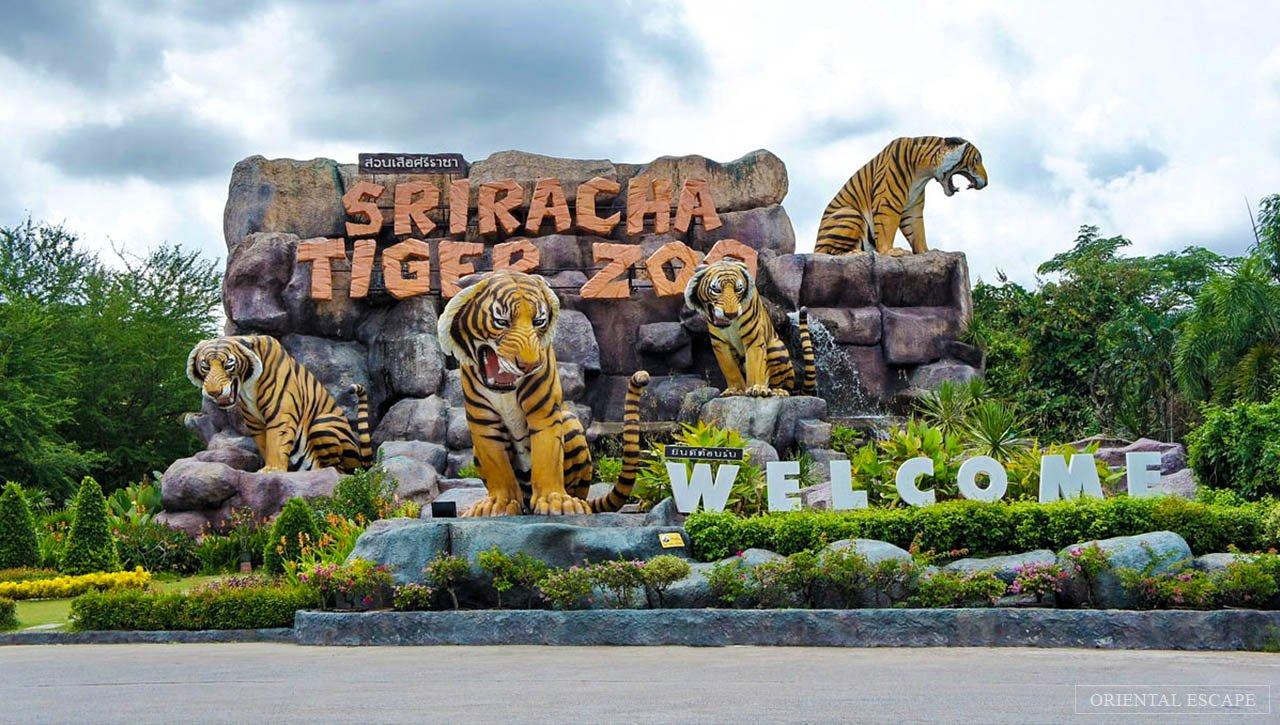 Sriracha Tiger Zoo Tour+Roundtrip Transfers - Tour