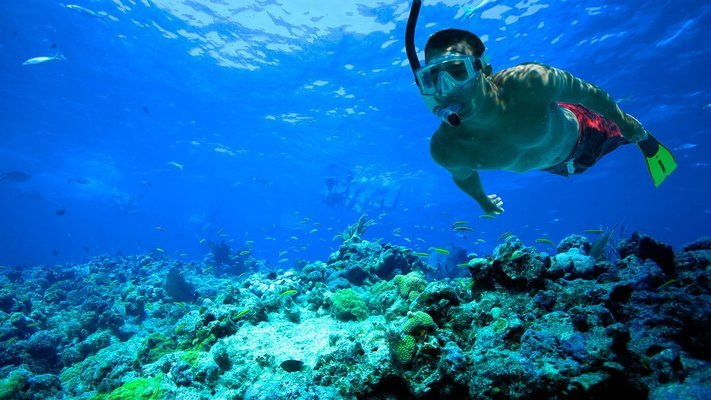 Island Trip With Snorkeling - Tour