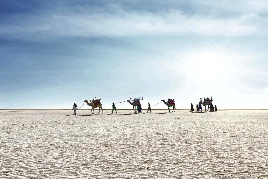 Great Rann Of Kutch – New Year Special ( Ex-Bhuj ) - Tour