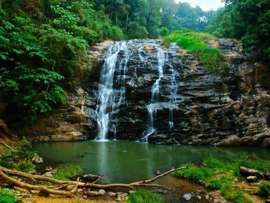 1N Coorg - 1N Mysore - 2N Ooty - Tour