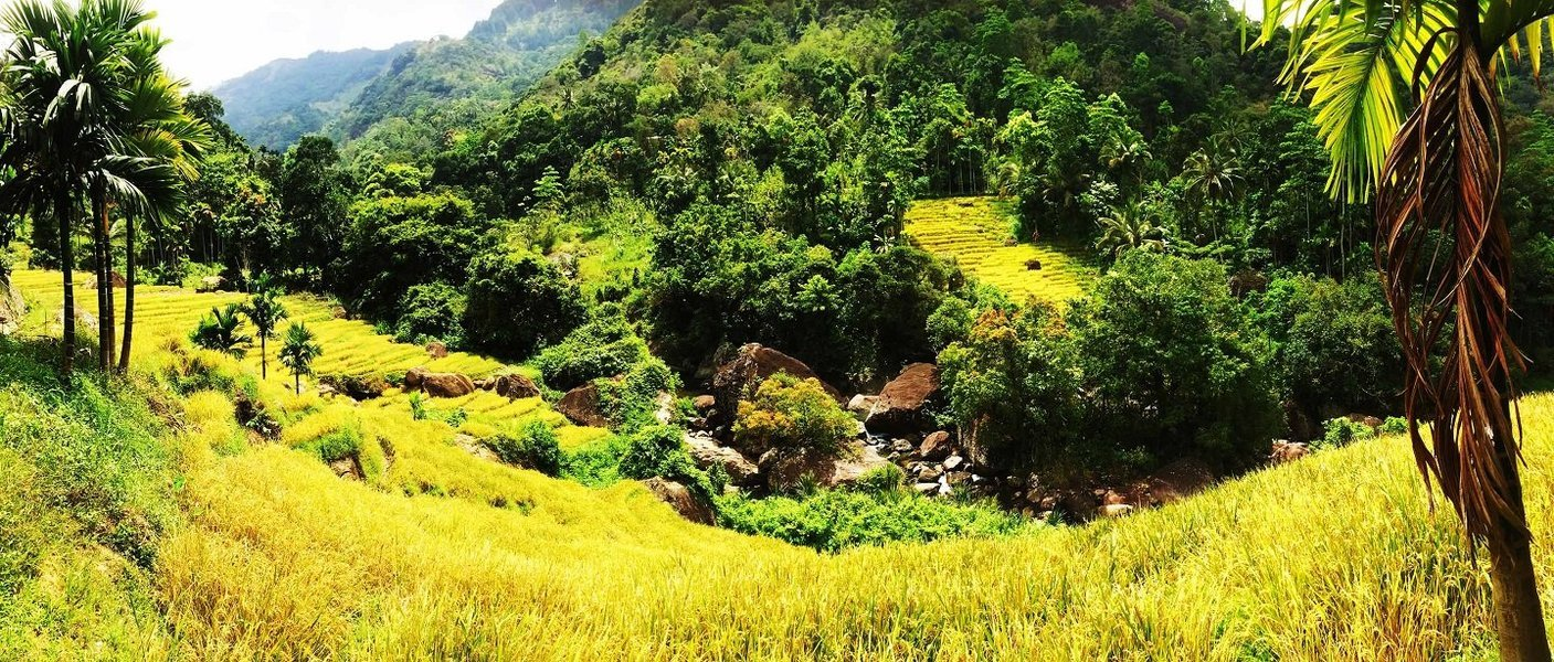 Tropical Sri Lanka - Tour
