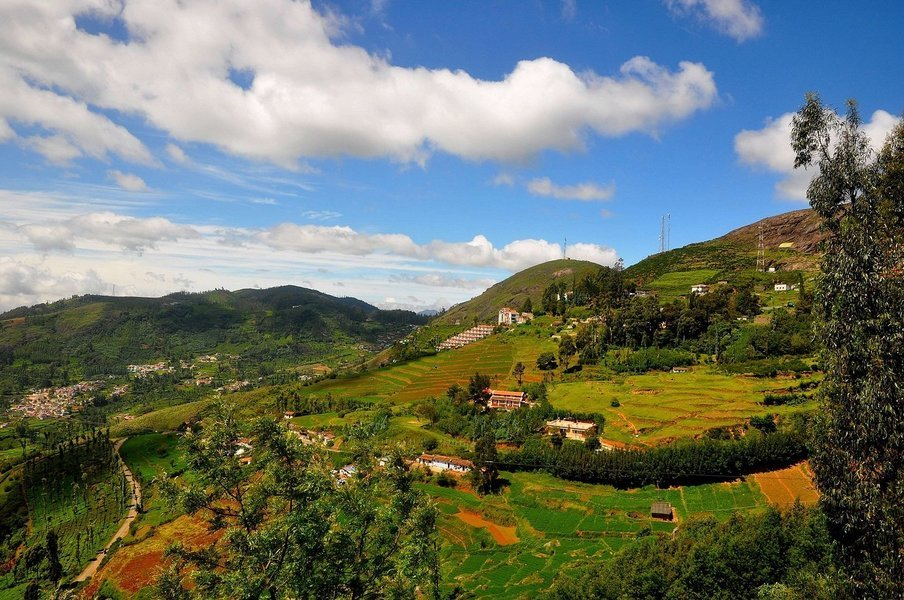 Ornaments of Ooty - Tour