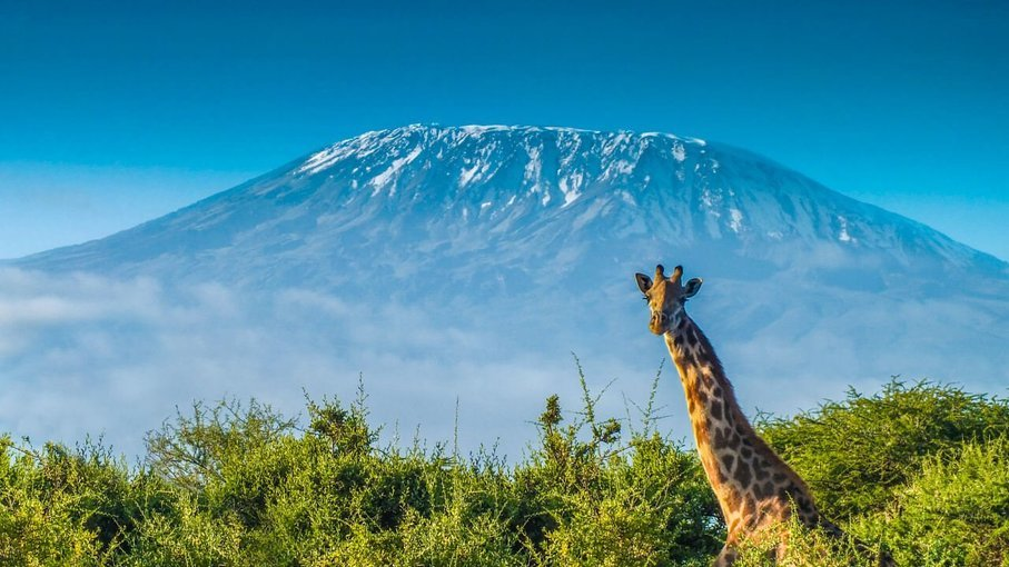 Marangu Route (Mt. Kilimanjaro Trek) - Tour