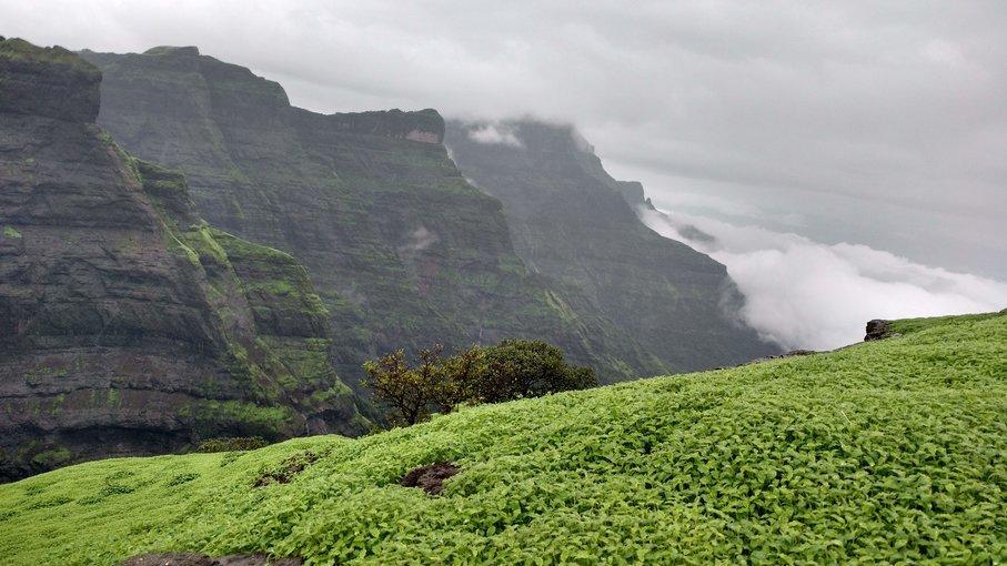 Range Trek from Ratangad to Harischandragad - Tour