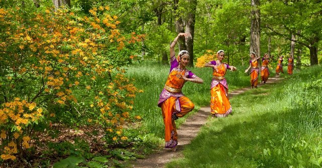 Classical Dance Tours - Collection