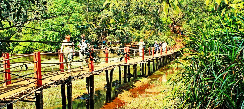 Dudhsagar Waterfalls in Goa, Best time to Visit Waterfall, trek with Spice Plantation - Tour