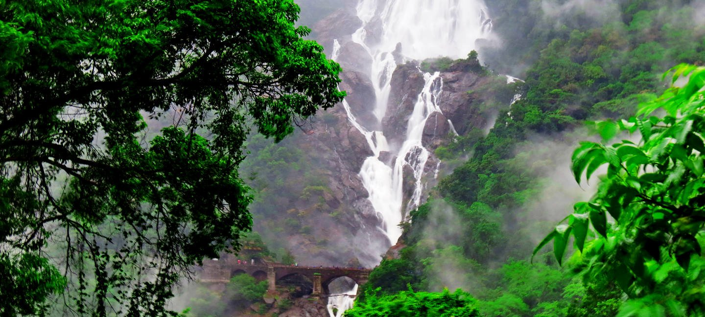 Doodh Sagar Waterfall With Spice Plantation - Tour