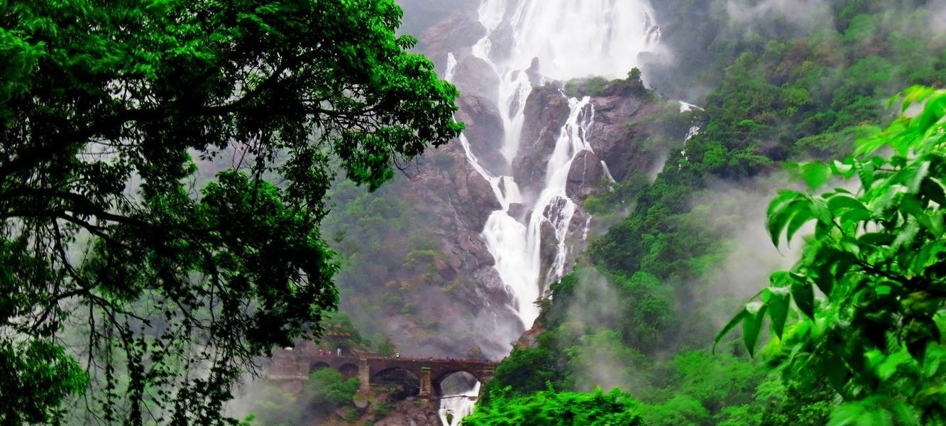 Doodh Sagar Waterfall With Spice Plantation - Tour