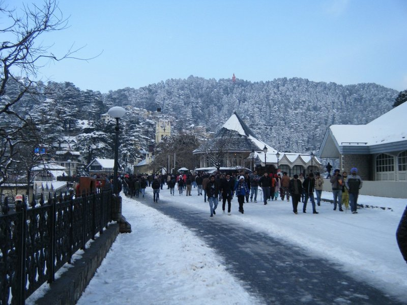 Snowy Himachal (Winter) - Tour
