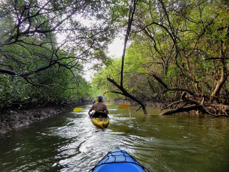 River Kayaking - Tour