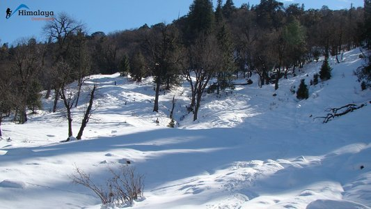 WINTER CHANDRAKHANI PASS TREK