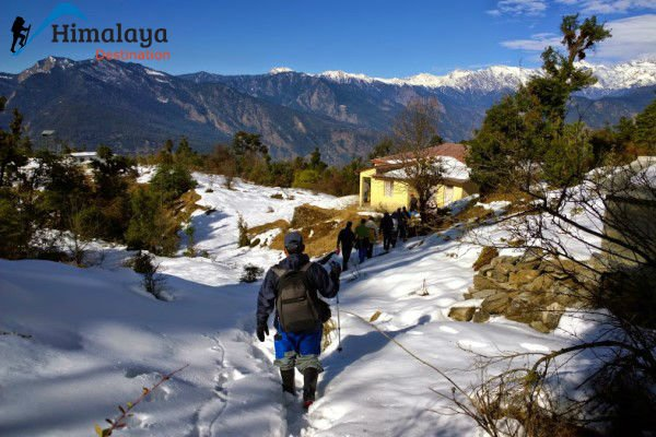 Deoriatal Chandrashila Trek - Tour