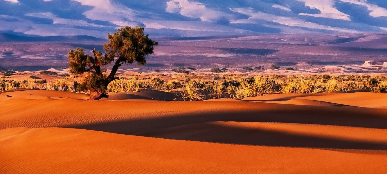 Morocco Tour Package - Tour