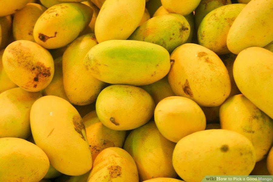 Mango Farm Tour - Tour