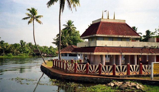 Best of KERALA With TREEHOUSE Stay - Tour