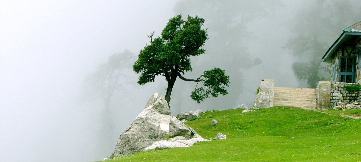 Mcleodganj-Triund Tour - Tour