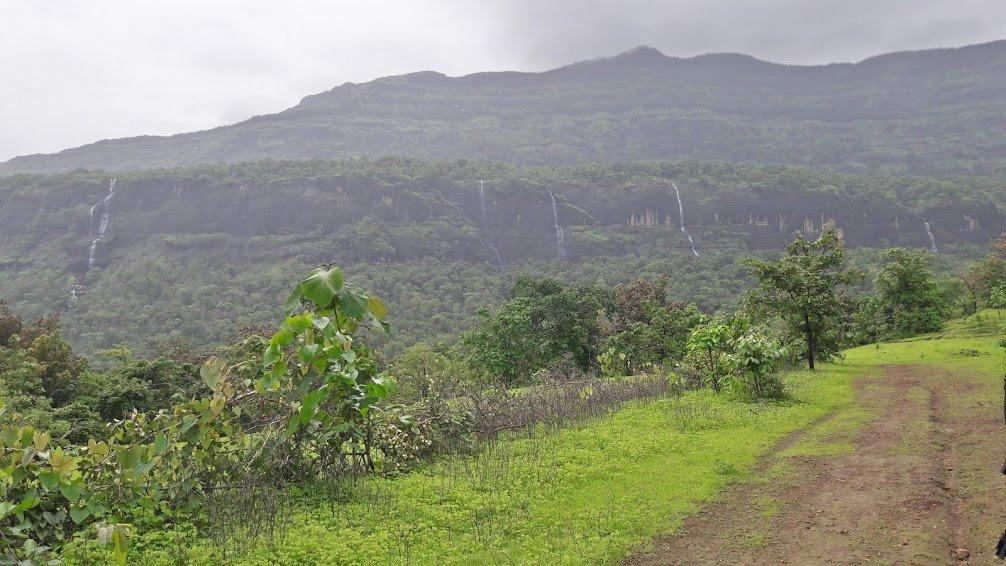 Bhimashankar Monsoon Trek - Tour