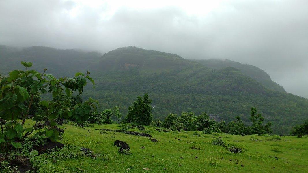 Sudhagad Monsoon Trek - Tour