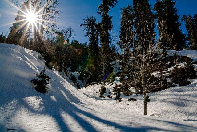 Queen of Hills Shimla Manali - Tour
