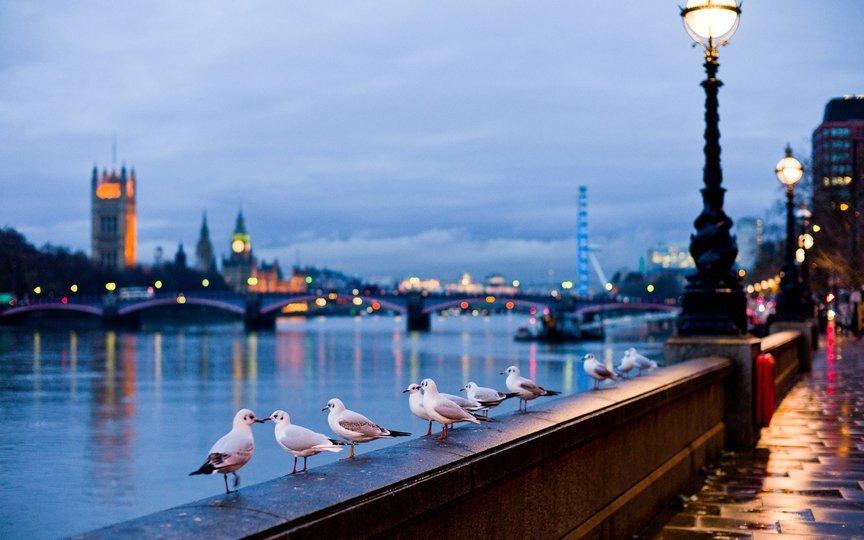 London And Paris Combo - Tour