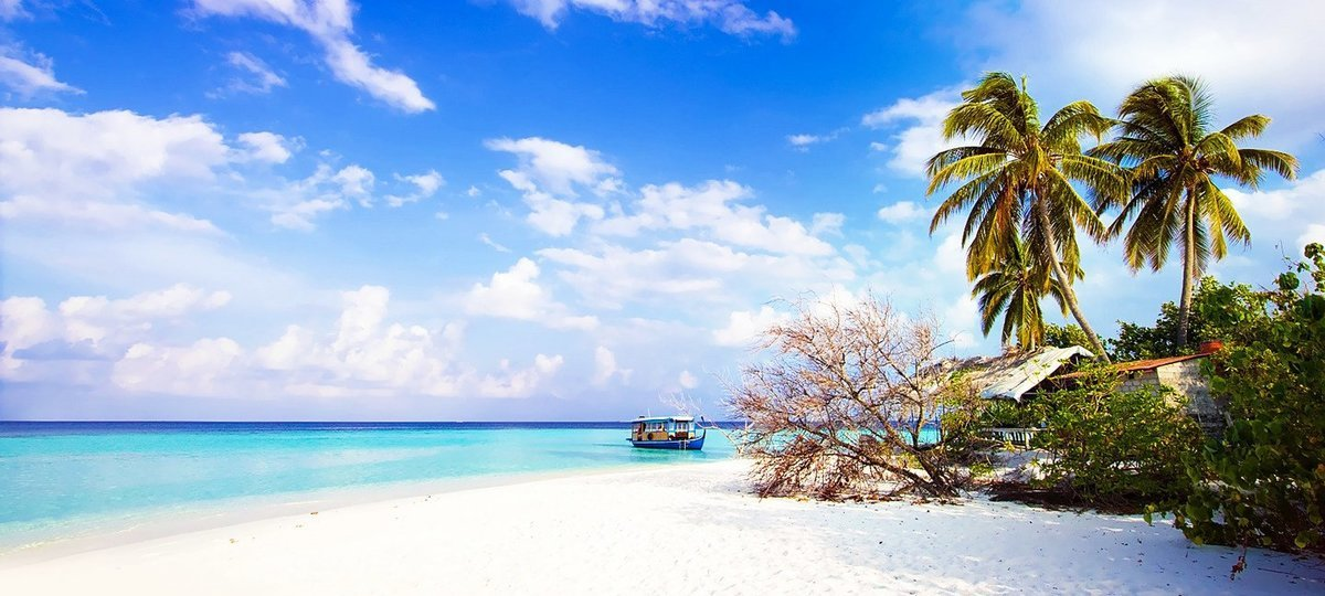 Andaman - LuvyTrip Promotional Package - Tour