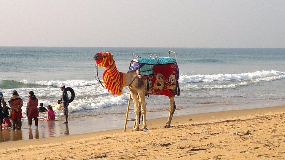 Relaxing Puri with Bhubaneswar - Tour