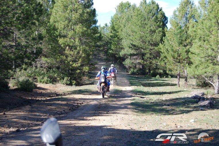 Trip & Track - Edición Cuenca - Tour