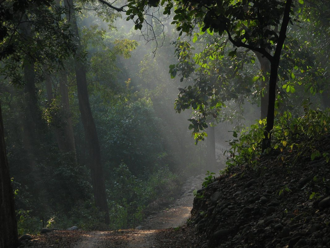 About Explore Corbett