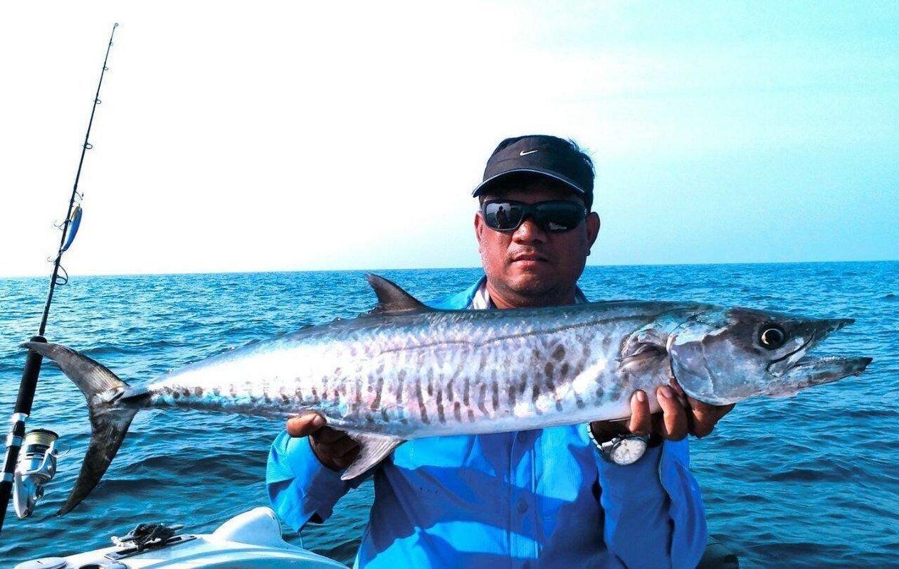 Chennai Fishing - Collection