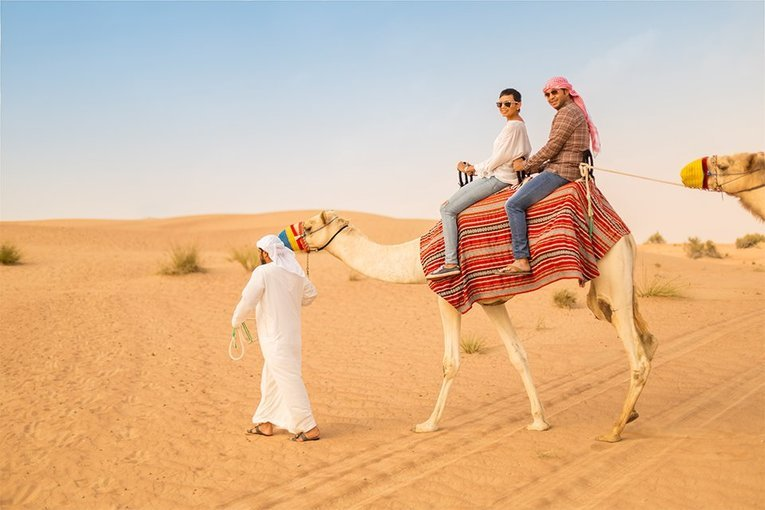 Camel Riding IN DUBAI - Tour