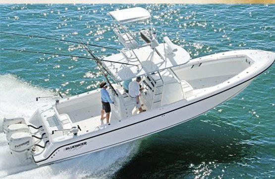 Bluewaters Sports Fishing - Tour
