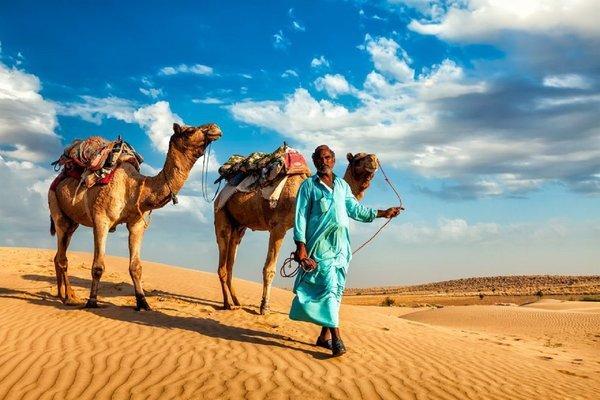 LTC: Rajasthan - Tour