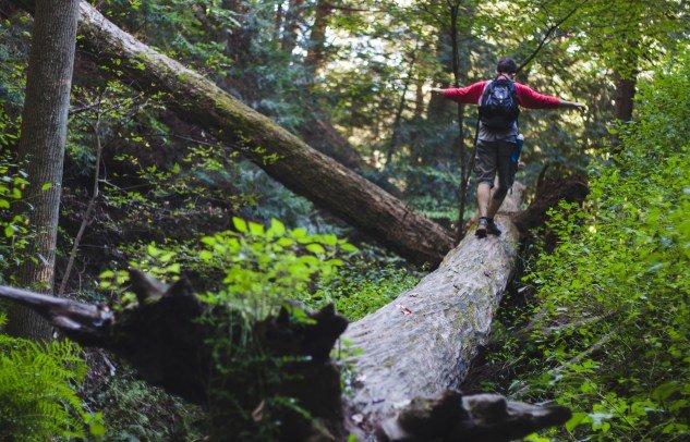 Trekking in Corbett