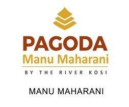 Manu_Maharani.jpg - logo