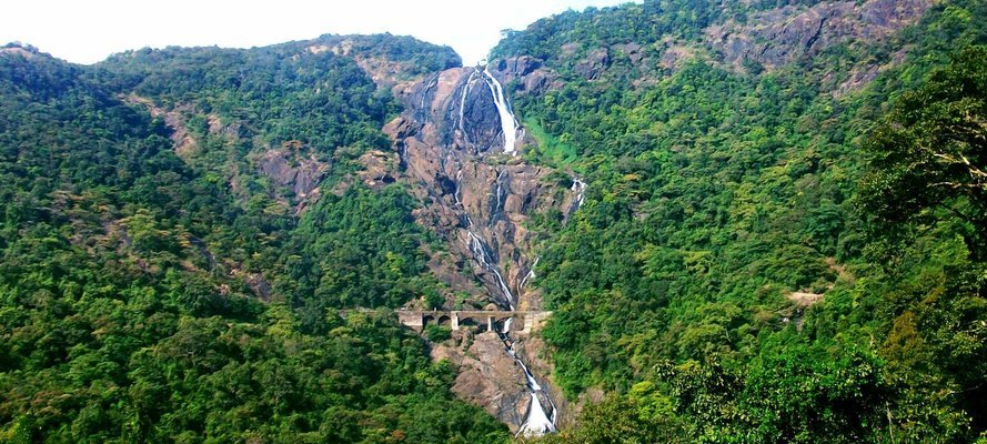 Dudhsagar & Spice plantation With Unlimited Lunch - Tour