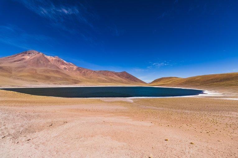 Lagunas Altiplánicas - Tour