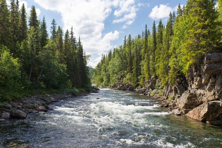 24 Km River Rafting (Marine drive) - Tour